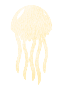 Jellyfish illustration